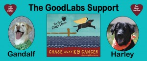 GoodLabs Final Banner (small)